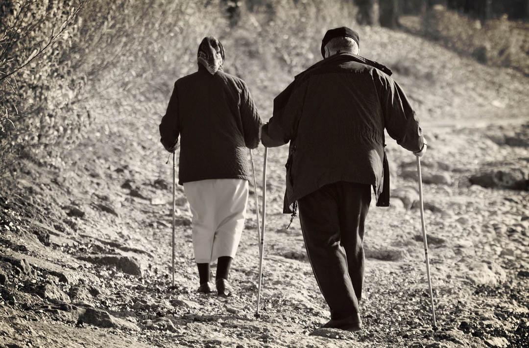 bastones-trekking-los-mejores
